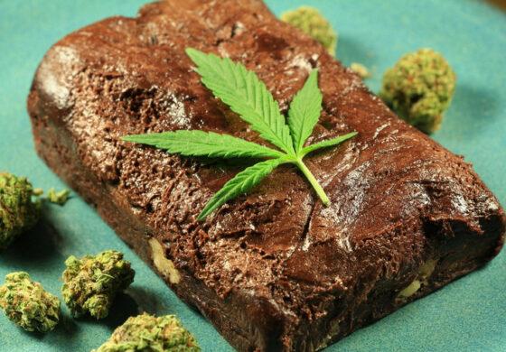 Му било досадно на роденденот па во тортата ставил марихуана, четири лица завршиле во болница