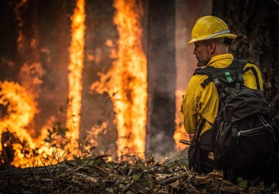 ДЗС ја започна кампањта за заштита од пожари