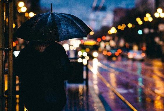 Врнежи во текот на ноќта