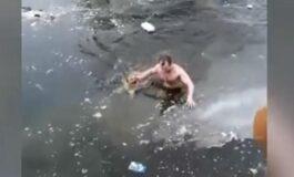 ХЕРОЈ НА ДЕНОТ: Скокна во ледена вода за да спаси куче (ВИДЕО)