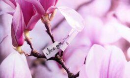 Хороскопски знаци кои ги очекува магична пролет